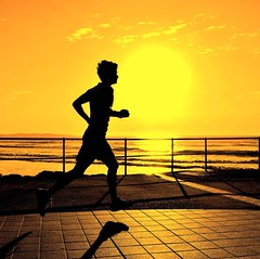 Sunrise Silhouette Runner (missgeok) Tags: lighting morning sea sky orange sun sunlight man black male art beach water colors beautiful weather silhouette yellow closeup backlight composition sunrise fence spectacular square gold golden lightandshadows amazing interesting artwork scenery day mood colours shadows angle bright artistic action vibrant candid perspective sydney creative silhouettes fast atmosphere australia running crop excercise colourful framing framework sideview runner gettyimages morningsun cronulla timing longshadows oneman goldenglow wholebody cronullabeach goldencolours goldensunrise goldentones colourtones angleofview nikond90 sunrisesilhouetterunner