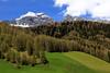 der letzte Schnee (mikiitaly) Tags: italy wiese berge grün wald südtirol altoadige wipptal frühjahr pfitschtal