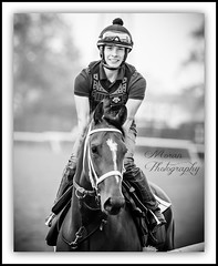 Lane Luzzi (EASY GOER) Tags: park horses horse ny newyork sports race canon track belmont running racing 5d athletes races thoroughbred equine thoroughbreds markiii workouts