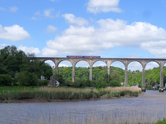 150124 crosses Calstock Viaduct (Marky7890) Tags: train cornwall viaduct calstock sprinter dmu tamarvalleyline fgw class150 150124 2p84