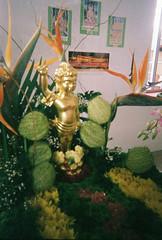 CNV000028-1 (Lee Sydney) Tags: festival temple day superia buddha buddhist birth buddhism celebration filter 400 fujifilm kg koh lomolitos xtra 2015 出生 wesak 卫塞节 hinayana therevada 三宝宫