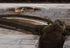 Qui l'a fait pleurer ? (bonnaudthomas) Tags: sculpture gargouille gargoyle glise church niort