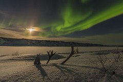 Freeze-up lights-2231 (Mathieu Dumond) Tags: canada nunavut arctic kitikmeot kugluktuk coppermine river frozen fall autumn snow sky october aurora borealis northernlights moon clouds timelapse editing video youtube canon 5dmkiii mathieudumond umingmakproductions