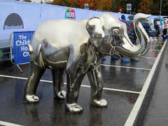 Inconelly commissioned by Pressure Technologies, Herd of Sheffield Farewell Weekend 2016 (Dave_Johnson) Tags: inconelly pressuretechnologies herdofsheffield herd elephant elephants art streetart sculpture sheffchildrens sheffieldchildrenshospitalcharity sheffieldchildrenshospital childrenshospitalcharity childrenshospital sheffield southyorkshire meadowhall carpark shoppingcentre