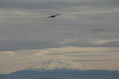 March ARB C-17 (Chuck Stephens) Tags: aircraftspotting airplanespotting militaryaircraft pdx kpdx cargoaircraft 452ndairmobilitywing marchairreservebase c17globemaster iii mthood