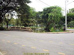 Lumphini Park in 2013, Pathumwan District, Bangkok, Thailand. (samurai2565) Tags: pathumwan hualamphongrailwaystation bangkok thailand railwaysinthailand bangkokrailwaystation erawanshrine chitlom rama1road skytrain policehospital phloenchitroad lumphinipark