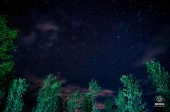 Stary Night - Ooty (smohanr2012) Tags: ooty stars nightphotography longexposure startrials milkyway cool coonoor beatifulcoonoor nilgiris nikond7000 sigma landscapes ootylandscapes trees nature camping sky green blue