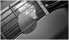 318-366 Take Your Pick (Aged Desperado) Tags: 366 nikon nikkor nikonflickraward 1755mm d7100 1755 guitar gretsch music monochrome f28