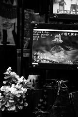 (the soil) (Dinasty_Oomae) Tags: minolta  minoltina  minoltinas s   tokyo  taitoku  yanaka   monochrome outdoor street bw blackwhite blackandwhite  earthenfigure
