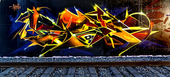 Artist: Pisko (pharoahsax) Tags: frankreich strasbourg elsass graffiti alsace france pmbvw bw kunst art streetart street urban urbanart paint graff wall artist legal mural painter painting peinture spraycan spray writer writing artwork tag tags worldgetcolors world get colors pisko