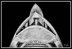 Black & white (De carrusel) Tags: 2016 ciudad varios carrusel valncia comunidadvalenciana espaa es