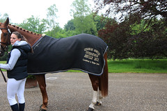 2016 Horses International (Steenvoorde Leen - 2.3 ml views) Tags: 2016 maarsbergen landgoed eventing horses international dressuur jumping dressage hindernis hrde obstacle hurde fenche springen pferde pferd horse cheval cheveaux