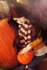 Pumpkin Spice and everything nice (Roterwolkenvogl) Tags: halloween pumpkin dollmore zaoll elfdoll soah smiling propertyoftheuchiha