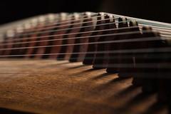 Guzheng-3 (dandrasphoto) Tags: dek andrs canon eos 1d mk4 70200 f4 l usm makro macro guzheng intrument hangszer szab sndor koto fnyek lights
