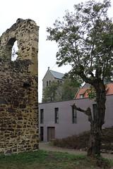 Auf dem Petersberg (julia_HalleFotoFan) Tags: petersberg stiftskirche ruine klosterpetersberg lauterberg hallesaale sachsenanhalt