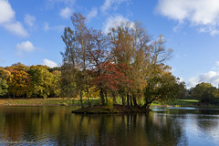 colourful autumn (Rourkeor) Tags: autumn trees clouds birds reflections water pond island ripples golden leaves sony sonyrx1r rx1r fullframe carlzeiss zeiss sonnar t 35mm glasgow scotland unitedkingdom gb