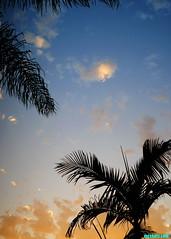 TropicalWeather (mcshots) Tags: usa california socal losangelescounty summer sunset coast sky clouds hot humid evening sun 2015 stock mcshots