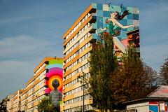 Seth & Faile (dprezat) Tags: faile seth paris street art graf tag pochoir stencil peinture aerosol bombe painting urban nikond800 nikon d800