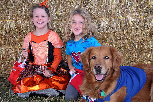 Photo - Howl-O-Ween-2016-038