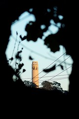 Coit (Johnny Grim) Tags: coittower sanfrancisco