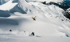 Chasing the Bird (Last Frontier Heliskiing) Tags: lastfrontierheliskiing heliskiing alpine snow winter travel bucketlist dream life technology beautiful helicopter heli astar mountains northernbc bc backcountry