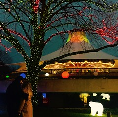 The Carousel Ride of Our Lives. (kathyreyes417) Tags: carousel christmaslights christmas lights zoo couple relationship narrative