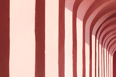 columns pink texture (Brother's Art) Tags: alley antique antiquities architecturalcolumn architecture art curve horizontal imperia italianculture italy old texture arc building costruction interior liguria modena multicolor nopeople pink pinkcolor prospective urban vintage