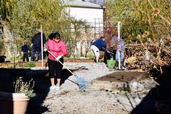 Teamwork in the Garden