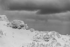 South Side of Mt Index (5) (Scott_Nelson) Tags: goldbar washington unitedstates us cascades cascadesfromtheair northcascadesfromtheair monroe airphotography blackandwhite mountians