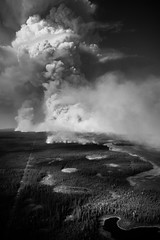 A World on Fire (Isaac Hilman (@lifeofisaac)) Tags: fire blaze raging forest smoke billowing bw monochrome storm forestfire wildfire nikon d800 taiga nt nwt canada hot heat scorching nature