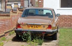 EPW 642Y (Nivek.Old.Gold) Tags: 1983 jaguar xj6 42 auto mannegerton kingslynn