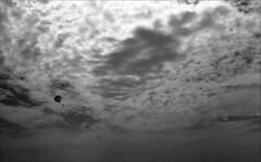 Random Parasailer (Jamie Powell Sheppard) Tags: sky blackandwhite bw film clouds 35mm mexico photo fineart negative parasail puertovallarta analogue canonae1program cloudporn 50mmlens fujiacros100 femalephotographer hc110dilb filmwins jamiepowellsheppard believeinfilm