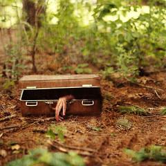 The forgotten. 6/52. (jesuismeganjean) Tags: travel dead blood forgotten suitcase idk asdkhfdkjfhd