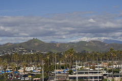 Two Trees from Ventura Harbor (wanderingnome) Tags: ca usa snow harbor unitedstates ventura venturacounty canondigitalrebelxt venturaharbor wanderingnomez sigma2880zoomlens