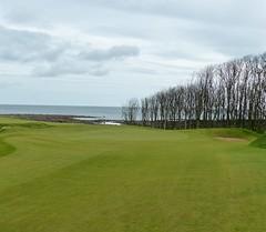 P1010649 - Kingsbarns #8 par 3 c cropped r (tewiespix) Tags: st scotland andrews fife golfcourse kingsbarns