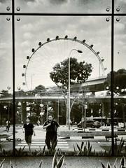 Framed Ferris Wheel and me (teelip) Tags: reflection me glass wheel mono ferris frame promenade mrt uploaded:by=flickrmobile flickriosapp:filter=nofilter promenademrtstationcc4dt15