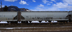 YEEHAW (Emptiness Of Light) Tags: art rose train graffiti colorado south fork co freight yeehaw amcx
