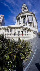 Auckland Town Hall (markoneswift) Tags: new distortion sony curvy fisheye auckland zealand colourful 8mm nex samyang rokinon markoneswift