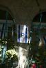 (Caitlin H. Faw) Tags: flowers blue light shadow plants white david color canon landscape eos star israel flag jerusalem may hexagram jewish 5d starofdavid israeli yerushalayim markiii musrara 2013 caitlinfaw caitlinfawphotography