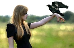 Black (megandgrace) Tags: trees woman black tree bird girl beautiful field mystery hair landscape fly flying long pretty sitting gloomy dress mask arm bokeh wing young sit blonde perch mysterious mystical perched raven sits