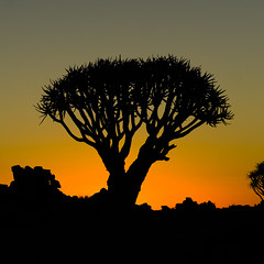 Nightfall (Gies!) Tags: namibia namibie