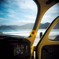Brasil (Etienne Despois) Tags: travel brasil square holga travelplanet