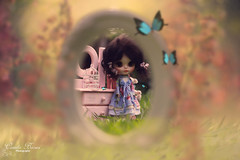 The Secret Garden ♥