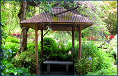 Floral gazebo (> Pinoy) Tags: nature garden gardens beauty beautiful color colors floral florals flora flower flowers spring mayflowers landscapes canon canonpowershot canonphotography waters fountains canada canadian britishcolumbia vancouverisland catchycolors explore nationalgeographic destinations travel travels travelers worldtravel coastal bloomig blooms bloom contrasts pretty wonders petals petal prettypetals bushes bushgardens butchardgarden butchardgardens tours touristattractions attractions placestosee placestovisit flowerpics flowerimages recent butchart butchartgardens johnduesbury ladybot