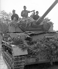 Panzerkampfwagen IV (L/48) Ausf. G (Sd.Kfz. 161/2) Nr. 304<br />A Panzer IV Ausf. Late. The crew took care to hide their armored with branches. Is it the 90. Panzer-Grenadier-Division?