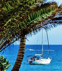 Lie Off (Konny ;-))) Tags: ocean sailboat ancor anchorage crew segelboot ozean barcavela ankern ancoraggio voranker