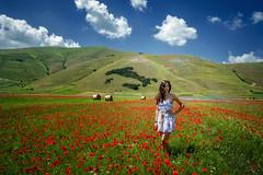 Estate (R.o.b.e.r.t.o.) Tags: summer italia italy umbria fiori flowers papaveri poppy model modella ragazza girl pianadicastelluccio castellucciodinorcia montisibillini altopiano poppies