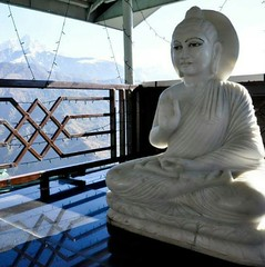 Buddha in the Himalayas. (Manoo J. Photos) Tags: buddha buddhism buddhist dharamsala mcleodganj india himachal himachalpradesh himalayas himalayan mountains tibetan nature peace beauty traveljournal travelphotographer traveldiary travelphotography ilovetotravel travel vacation indiatravel travelers wanderer traveler