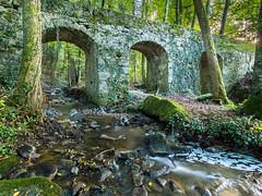 20161015Brcke-15 (s.schulthess) Tags: bridge brcke bro pont wald forest frat baum tree arbre wasser water bach river moos landschaft landscape natur nature schweiz switerland