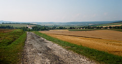 (analogrem) Tags: countryside hungary fields summer crop church landscape analog film road travel hills outdoor village